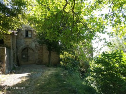 LAND 3 HECTARES WITH RUSTIC TO RESTORE