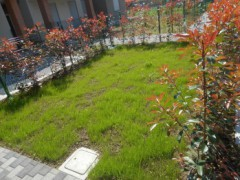 THREE-BEDROOM APARTMENT WITH GARDEN - 23