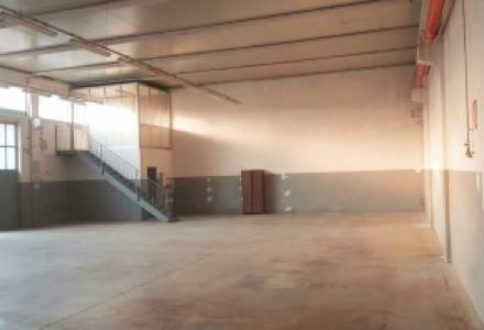 SHED OF 300 MQ FOR SALE IN MASATE